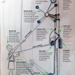 Human Harp Tech Kit illustration by Di Mainstone